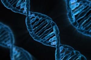 CRISPR Editas